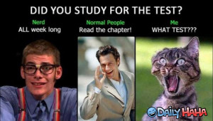 Did_You_Study_funny_picture