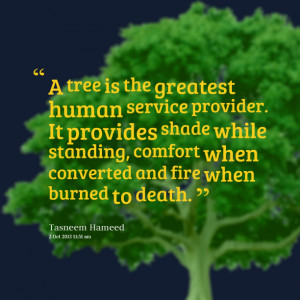 Quotes Picture: a tree is the greatest human service provider it ...