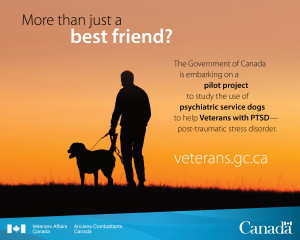 ... announces service dogs pilot project to support Veterans with PTSD