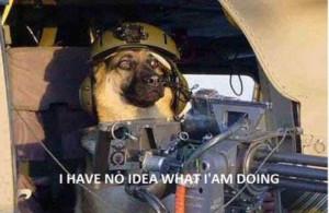 "Have No Idea What I'm Doing"" Meme (20 pics)"