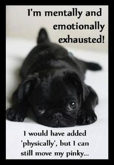 mentally and emotionally exhausted! I would have added 'physically ...