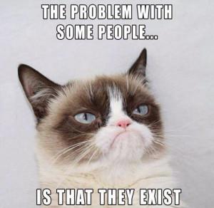 animals animals cats funny pics funny pictures grumpy cat humor lol ...