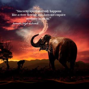 Comments Off on elephant sunset splash pamela quote