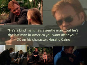Related Pictures tags csi meme csi miami david carusoe double meaning ...