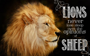 lions never lose sleep over the opinions of sheep