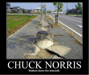 Filed Under: Chuck Norris Was Here Tagged With: chuck norris , meme