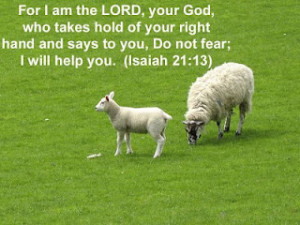Do Not Fear, I Will Help You