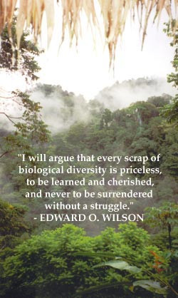 In her quest to explore and educate others about the biodiversity ...
