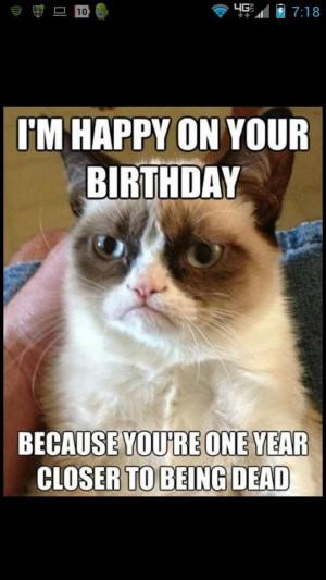jpg funny happy birthday cat funny happy birthday grumpy cat grumpy ...