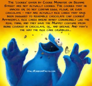 Seasame Street Facts- Cookie Monsters cookies copy
