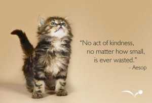 No-act-of-kindness-no-matther-how-small-is-ever-wasted-Meaningful ...