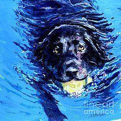 Black Labrador Retriever Paintings - Black Lab Blue Wake by Molly ...