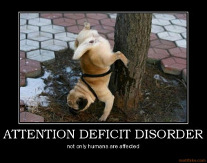 attention-deficit-disorder-dog-fun-pee-demotivational-poster ...