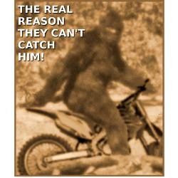 sasquatch_bigfoot_big_foot_dirt_bike_funny_tshirt.jpg?height=250&width ...