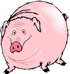 Car jokes: Funny drawing of happy, fat pig.