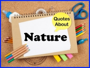 Learning Quotes Download...