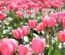 flowers-god-pink-flowers-quotes-622163.jpg
