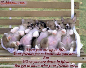 True Friendship.... ~ Quotes-Pictures | Inspirational Quotes ...