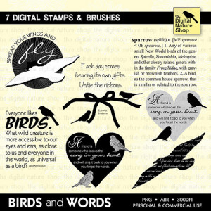 Birds and Words - Sayings - Quotes - 7 Digital Stamps and Brushes ...