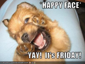 TGIF/ funny animal pictures