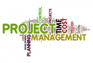 We offer a Project Management Platform were we keep in touch with you.