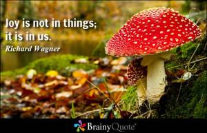 Joy is not in things; it is in us. - Richard Wagner