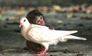 selfless_selflessness_selfish_love_happiness_open_your_heart.jpg