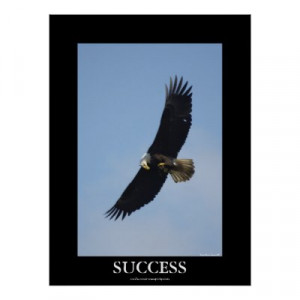 Success Motivational Posters on Success Bald Eagle Motivational Poster ...