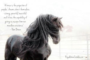 Horse Quotes Inspirational