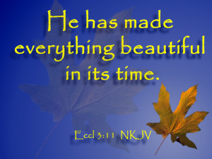 Worship Background for Fall based on the Bible verse, Ecclesiastes 3 ...