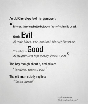 An old Cherokee told his grandson:
