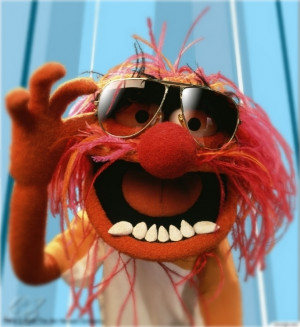 hands down my favorite muppet is animal he is an animal lol from his ...