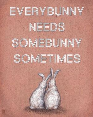 Quotes, bunny love