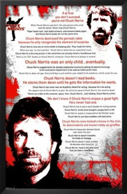 Chuck Norris (Quotes, The Best) Movie Poster Print