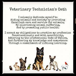 ... vet tech quotes funny calm down funny vet tech quotes vet tech quotes