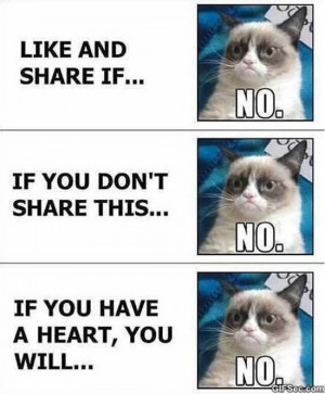 Grumpy Cat vs. Facebook MEME 2015