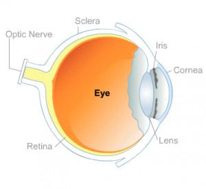 diabetic eye problems eye cancer eye diseases eye infections eye