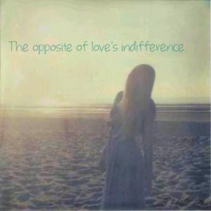 The lumineers - stubborn love