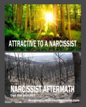 Narcissist Aftermath... Emptiness; devastation. Image of how I feel on ...