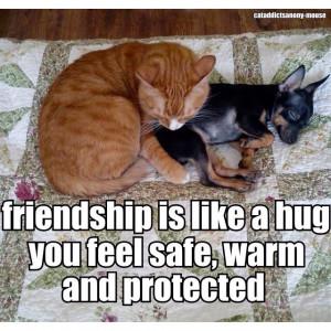 Hug Quotes And Sayings Todays