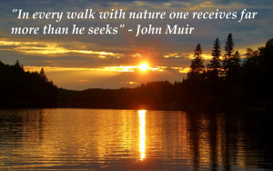In Every Walk With Nature One Receives