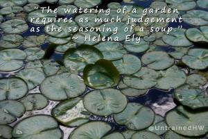 ... and Vegetable Sayings Gardeners Sayings Vegetable Gardening Quotes
