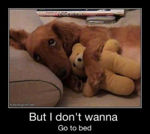 but i don't wanna go to bed….