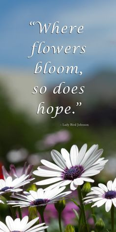 ... garden #quotes at this link @ http://themicrogardener.com/quotes
