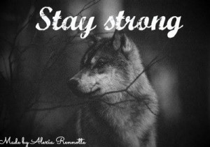 cute, quote, stay strong, true, wolf