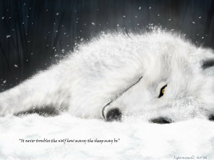 snow white quotes artwork wolfs rain wolves Knowledge Quotes HD ...