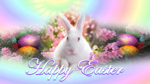 for forums: [url=http://www.tumblr18.com/beautiful-bunny-happy-easter ...