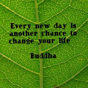 Buddha -Quote