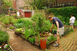 Garden. Dig It. This blog dives into the uppermost layers of community ...