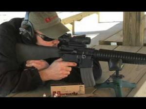 450 Bushmaster vs .223